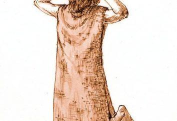 Vervische lub wory. Jaki jest koszula włosy mnichów