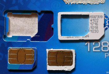 Wie eine SIM-Karte Mikrosomen mit ihren Händen machen?