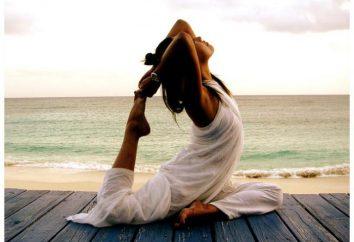 Macht Yogis: das System, die Grundsätze und das Menü