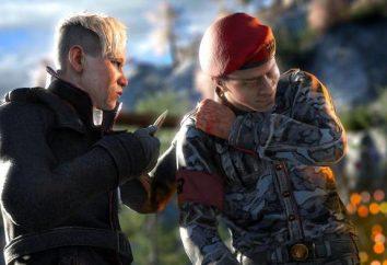 Spiel Far Cry 4: Feedback. Far Cry 4 startet nicht – was tun?