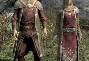 Gli Alti Elfi nei giochi: caratterizzazione di tutti i tipi