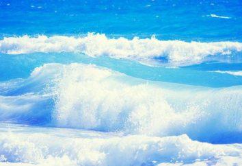 Qu'est-ce qu'il est dans l'eau de mer: une composition en pourcentage et densité