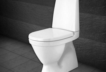 Banheiros Gustavsberg: tipos, descrição. Opiniões sobre o encanamento
