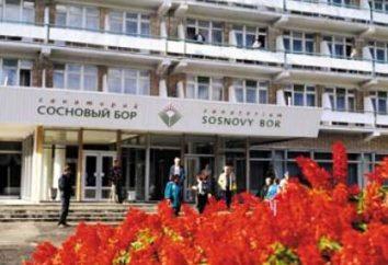 """Sanatorium """"Pinery"""" Riazań regionu: ceny, opinie i oficjalna strona"""