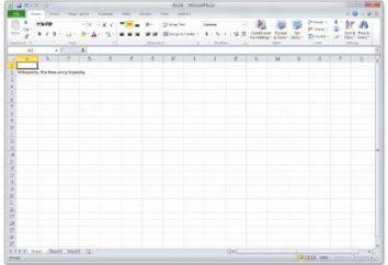Details darüber, wie die Spalten in Excel zu beheben