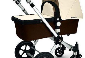 poussette tendance pour un nouveau-né. Avis sur les caractéristiques fonctionnelles