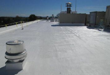 telhado penetração para ventilação e chaminé