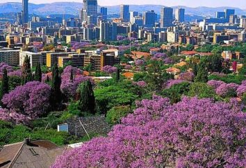 La capitale de l'Afrique du Sud – Pretoria, Bloemfontein et Le Cap?