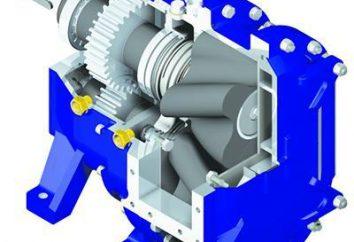 Rotationspumpe: Betrieb. Arten von Pumpen
