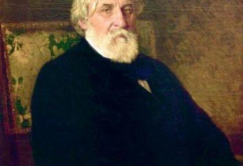 Résumé. « Asya » Tourgueniev Ivan Sergueïevitch