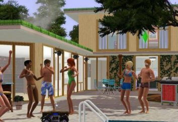 "Tira ""The Sims 3"" – o que fazer? Por que voa ""The Sims 3""?"