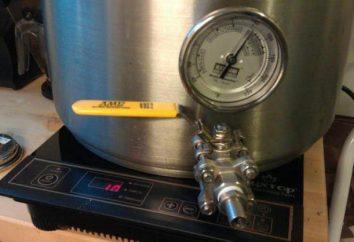Quelle est la cuisinière à induction pour brasser le meilleur?
