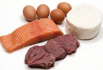 Les protéines végétales et des animaux … Pourquoi ont-ils besoin du corps?