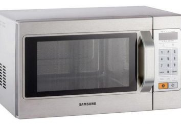 La dimensione del microonde. Che cosa è un forno solitario e come mettere un forno a microonde in una piccola cucina