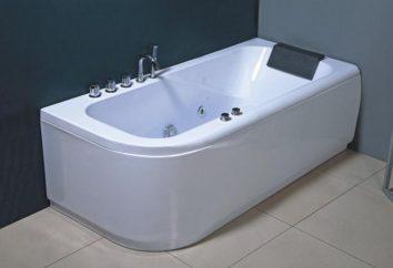 mamparas de baño: funcionalidad y la decoración