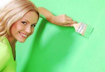 Jak pozbyć się zapachu farby po remoncie: wentylacja pomieszczenia, pralnia chemiczna