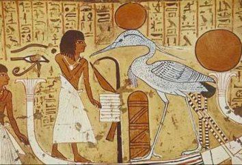Les chiffres de l'Egypte ancienne. Culture et art de l'Egypte ancienne