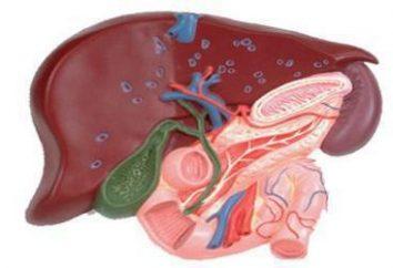 malattia di Caroli: sintomi e trattamento