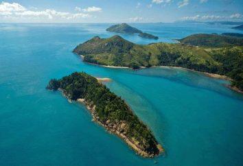 Hémisphère Sud: nature, climat, caractéristiques de la flore et de la faune