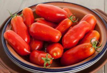 """Pomodoro """"grozdevoy francese"""": descrizione delle caratteristiche di coltivazione, recensioni"""