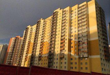 LCD « New Ohta » à Saint-Pétersbourg: avis, descriptions et commentaires