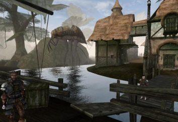 """""""Morrowind"""" – a passagem de um dos jogos de RPG mais complexos"""