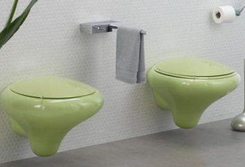 Zawieszone toalety: plusy i minusy. opinie klientów