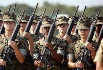 Was ist der Militärdienst? Fitness für den Militärdienst
