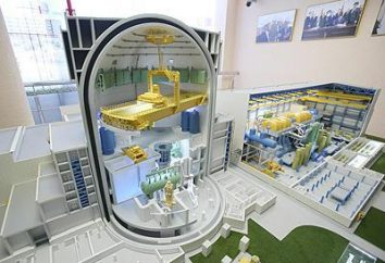 AES-2006: Russisches Atomprojekt der neuen Generation Station