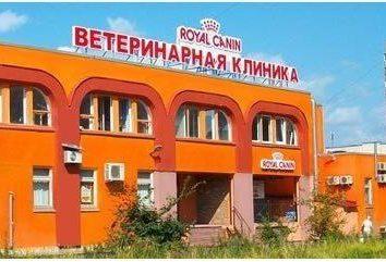 asistencia médica a los animales en San Petersburgo. clínica Sotnikova