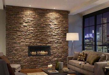 Decorar as paredes de pedra: decisões ousadas na intrere moderna