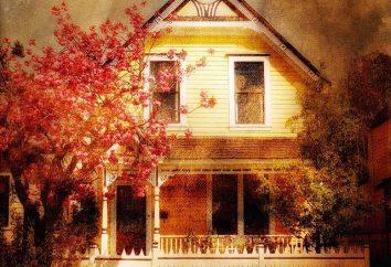 Para todos los que quieren tener su casa: un proyecto de casa de madera con un garaje