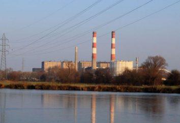 Las centrales térmicas en la economía del país