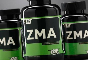 ZMA – nutrição esportiva durante o exercício