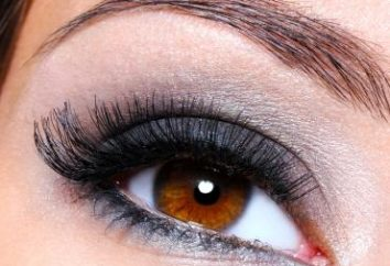 """Make-up für braune Augen """"Smokey Eyes"""": die Farbpalette und Entwicklungsstadien"""