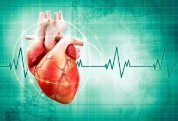 Die wirksamsten Medikamente für Herzrhythmusstörungen: eine Liste der Bewertungen