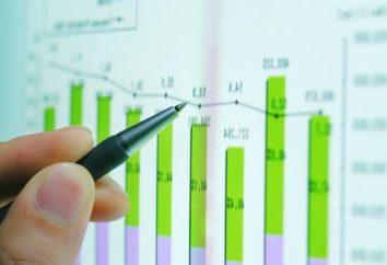 Analyse des immobilisations de l'entreprise et de son application