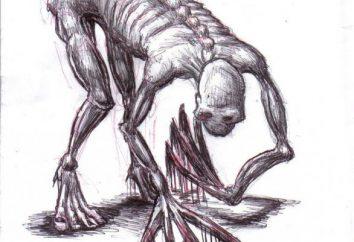 Rake – di essere trovati nelle vicinanze di Birobidzhan. rastrelli Man