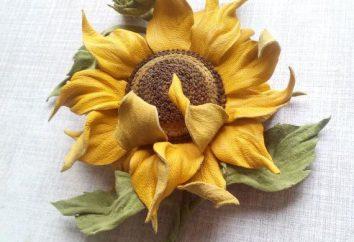 Sunflower Leder: Master Class und Beschreibung