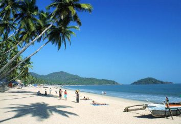 Hotel Coconut Grove 4 * (Índia, Goa do Sul): descrição, fotos, opiniões de turistas