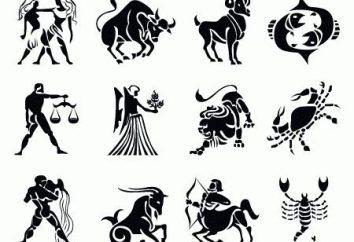 O número de signos do zodíaco. Zodiac sinais dos números. sinais característicos do zodíaco
