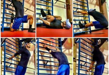 Übung auf der Sprossenwand: Optionen. Eine Reihe von Übungen auf Sprossenwand für Kinder