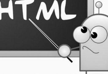 Co to jest typ wejścia HTML?