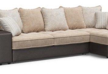 """Sofa """"Dubai"""": commentaires des internautes, la description du modèle"""