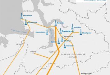 """Pole """"Urengoi"""": historia rozwoju, dostaw, konserwacji, perspektywy"""