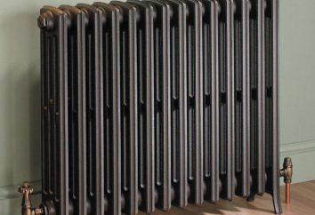 Grzejniki Metal: specyfikacje techniczne i opinie