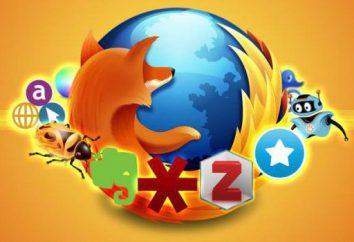 """Mozilla Firefox: os aditamentos necessários. """"Mozilla"""": o que suplementos que você precisa prestar atenção?"""