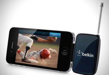 Telewizja mobilna i jego standardy