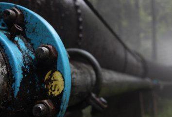 Compensatore per il gasdotto: tipi, produttori, descrizioni e recensioni. giunti di dilatazione per tubi in polipropilene