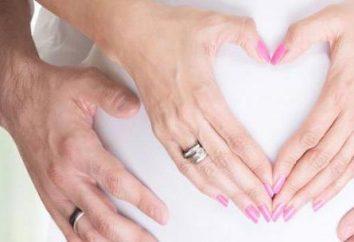 Rozwód, gdy jego żona jest w ciąży: niuanse procesu